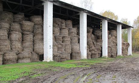 Брянский поставщик льна для смоленского учреждения запустил производство